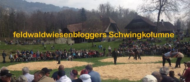 schwingkolumne
